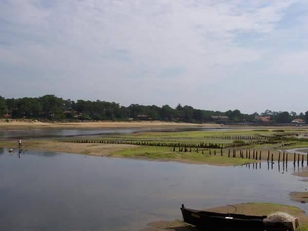 Le courant de Mimizan est un endroit idéal pour la pêche à pied