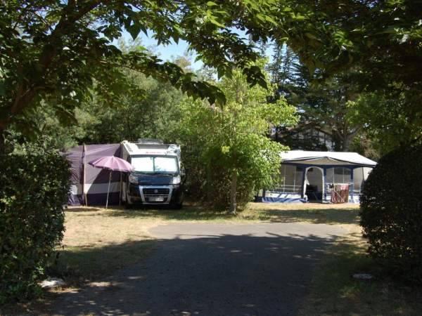 Emplacement pour votre tente en pleine forêt dans les Landes