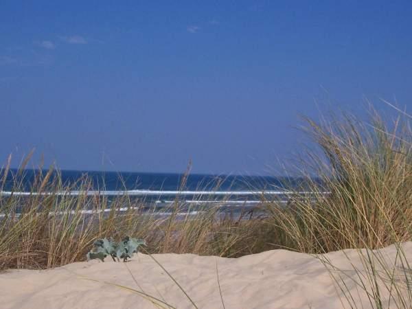Montez dans les dunes des Landes pour avoir un point de vue sur le littoral aquitain